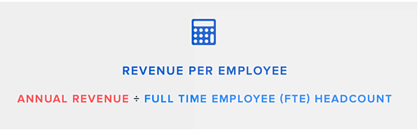 How to Calculate Revenue Per Employee